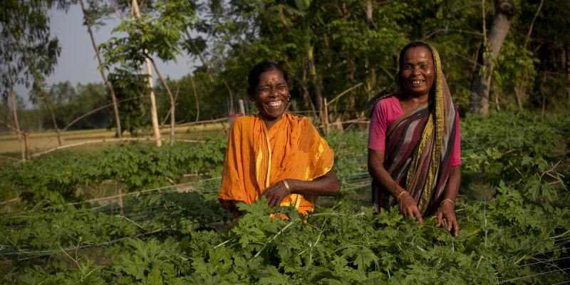 Farmers in Bangladesh
