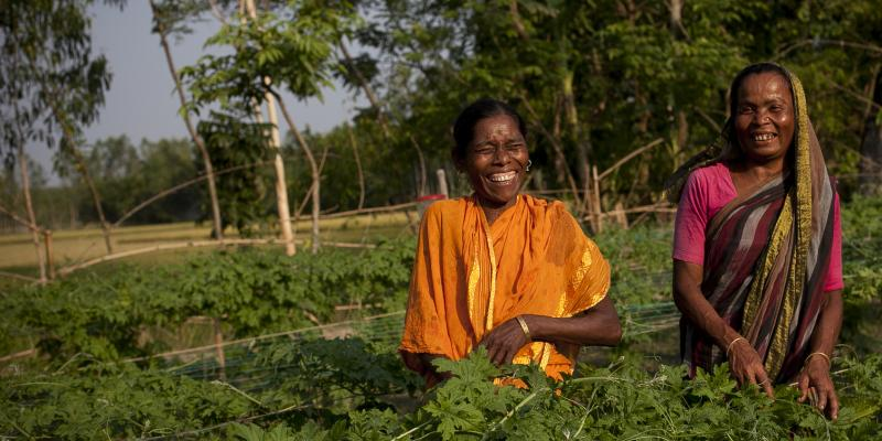 Female farmers in Bangladesh