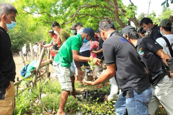 The community organises planting and hands out mangrove saplings.