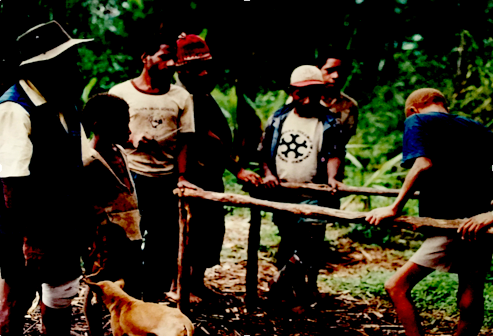Building parallel bars for accessibility in PNG
