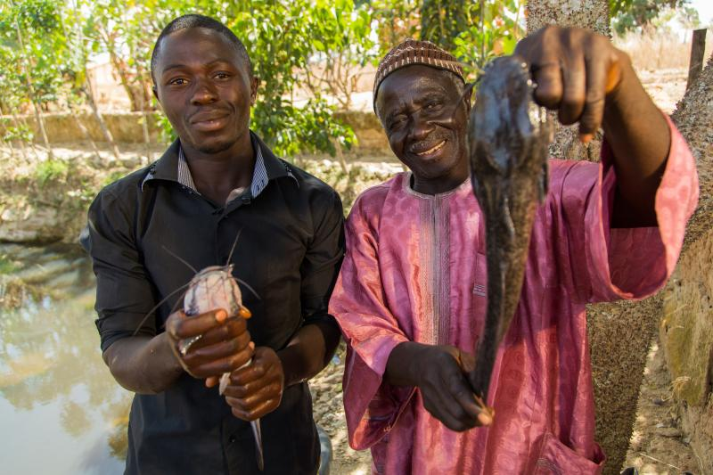 Baba Peter Keita and son Richard Peter, run a fish farm. They have received training from VSO local partner PAD