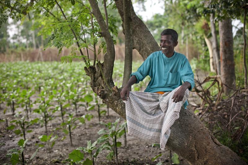 Abdul Latif, 59, standing in a field in Bangladesh