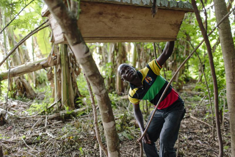 Sam Obang, member of the Nen Anyim youth co-operative group inspects the beehives that his community has built.