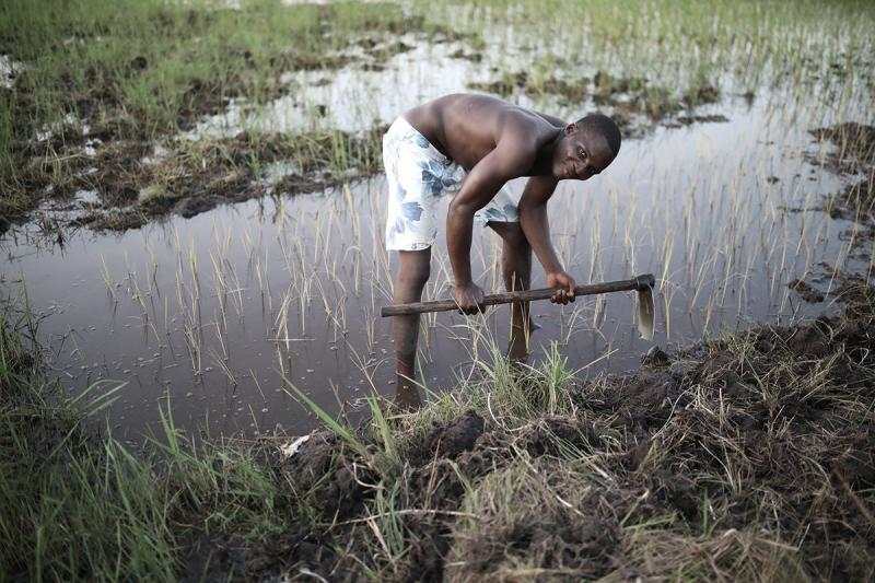 A man works to recover his flooded field
