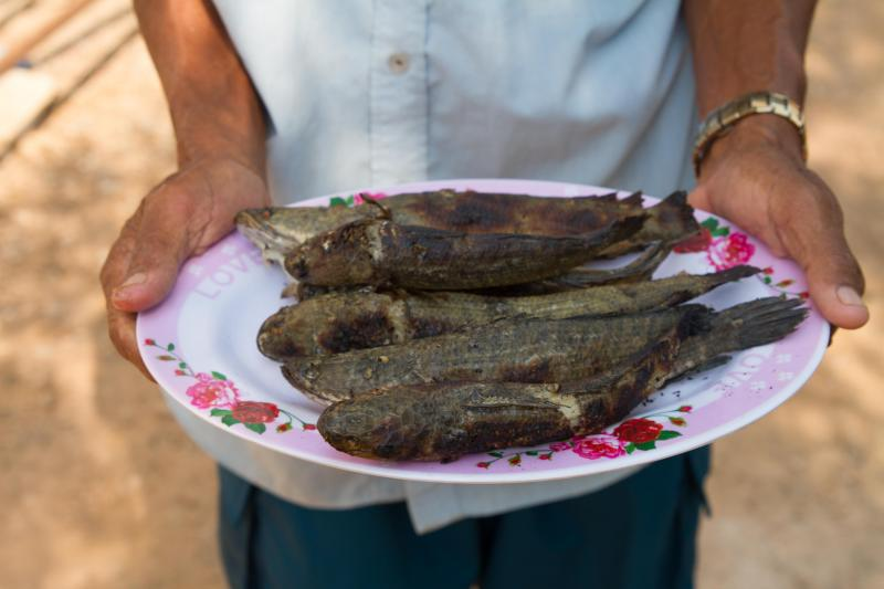 Man holding plate of cooked fish